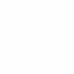 Logo_white_Flow3d